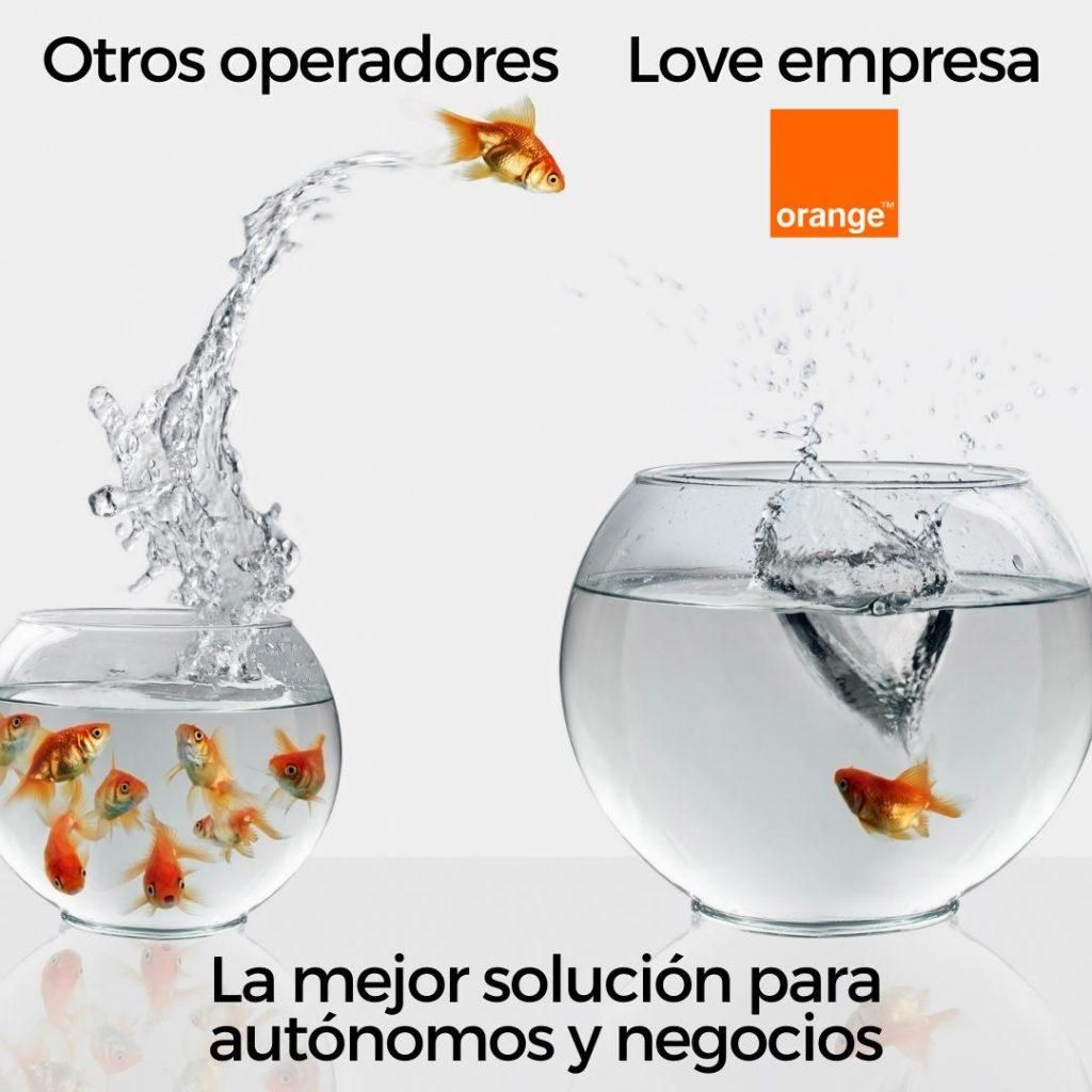 Love empresa